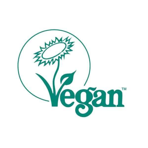 Vegan-PRE-TRAINING-WORKOUT